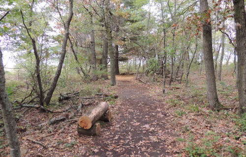 Helstrom Nature Trail